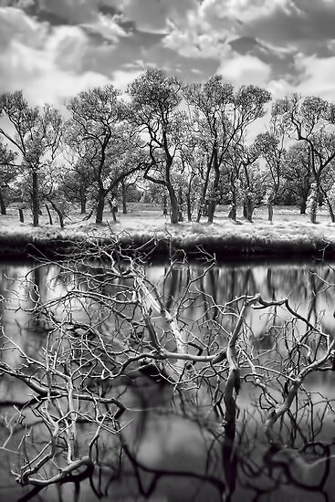 Immersed by Frost&Roxburgh Photography