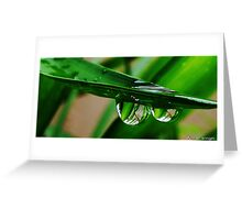 two water drops Greeting Card