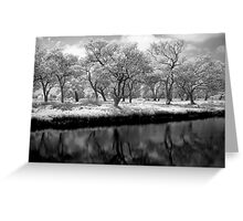 I'm Shadowing You Greeting Card