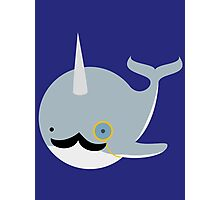 Sir Narwhal Photographic Print
