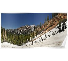 Trail to Red Pine Lake, Looking Back Poster