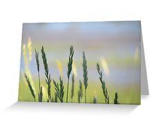 Seashore Grasses Greeting Card