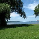 Seneca Lake, New York, Summer 2009 by BagLady