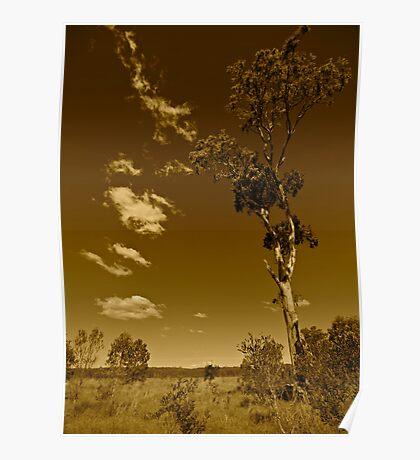Australia in Sepia Poster
