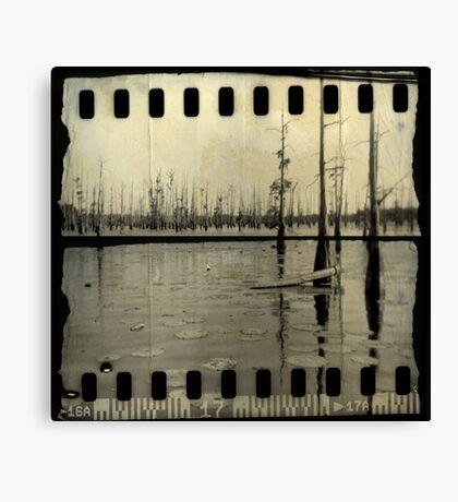 Black Bayou Canvas Print