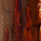 Textures - Bleeding Gums by Jordan Miscamble