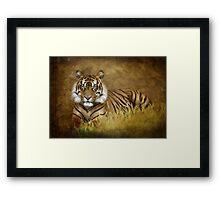 Tiger's Tale Framed Print