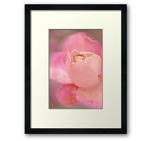 Beauty Lives to See Another Day Framed Print