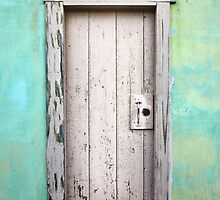Door by Adriano Carrideo