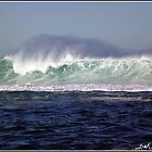 Newcastle big surf  by dezzsp1
