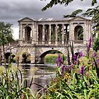 The Palladian Bridge  by Clive