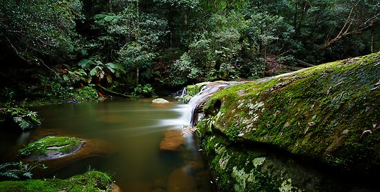 A Parallel View - Somesby Falls by Mark  Lucey
