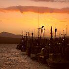 Wharf at Sunset - Eden Australia by Nicki Baker