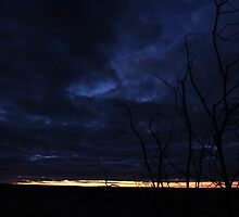 Almost Night by kristyimages