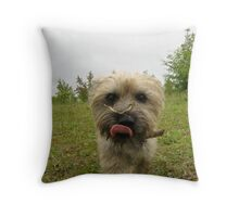 Harry Jarvis Throw Pillow