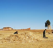 Peruvian locals working in the field by slkphotography