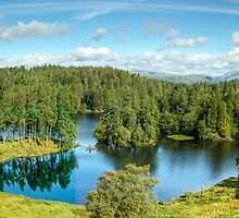 A Panoramic View of Tarn Hows by VoluntaryRanger