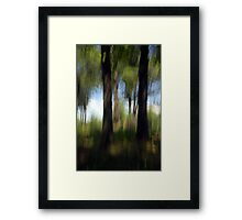 An August Afternoon Kitty Todd Nature Preserve Framed Print