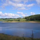 Wimbleball Lake, Somerset,Devon,UK pic 2 by janet davies