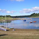 Wimbleball Lake, Somerset,Devon,UK pic 4 by janet davies
