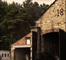 Beamish Pockley Rail Line by angelimagine