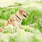 Golden Retriever Chance by Yvonne Carter