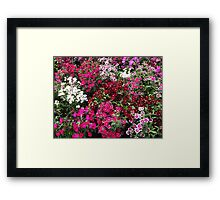 Cover me in flowers! Framed Print