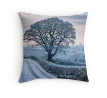Winter in the orchard county Throw Pillow
