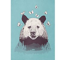 Let's Bear Friends Photographic Print