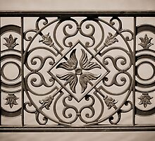 ornamental railings of the bridge of wrought iron by Valerii Kotulskyi