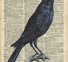 Crow on dictionary book page by DictionaryArt