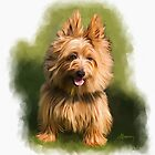 Cairn West Highland Terrier Pet Portrait by Michael Greenaway