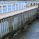 The Wooden Jetty by Lunaria