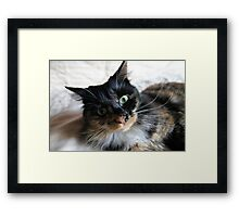 It Moves It Moves! Framed Print