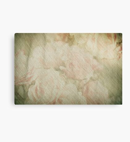 Vintage silk cotton roses texture Canvas Print
