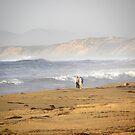 Surfs Up Couple Walk by Sandra Gray