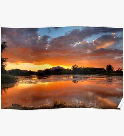 Sunset Surround Poster