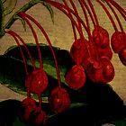 Berries by Debbie Robbins