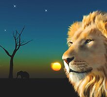 African Lion wildlife Portrait by Michael Greenaway