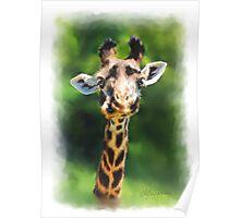 Wildlife African Giraffe Portrait Poster
