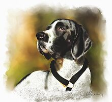 Large short haired Pet Dog Portrait by Michael Greenaway