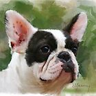 Pet Portrait French Bulldog painting by Michael Greenaway