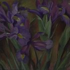 Irises by Martha Mitchell