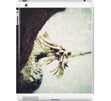 Pacatus Gold Dragon iPad Case/Skin
