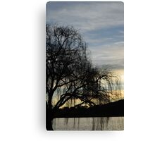 sombre willow Canvas Print