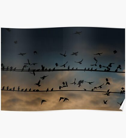 Single File, Not all in flight Poster