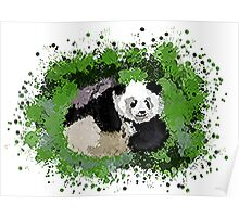 Cute playful Panda Poster