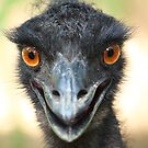 Say cheese Mr Emu by Azmi Zakariah
