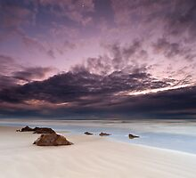 """The Quiet Observer""∞ Coolum, QLD - Australia by Jason Asher"