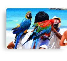 Parrots Of The Caribbean Canvas Print